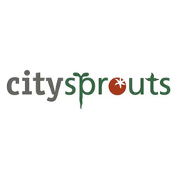 SQUARE-city-sprouts
